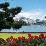 The Best Sydney Flower Delivery Services