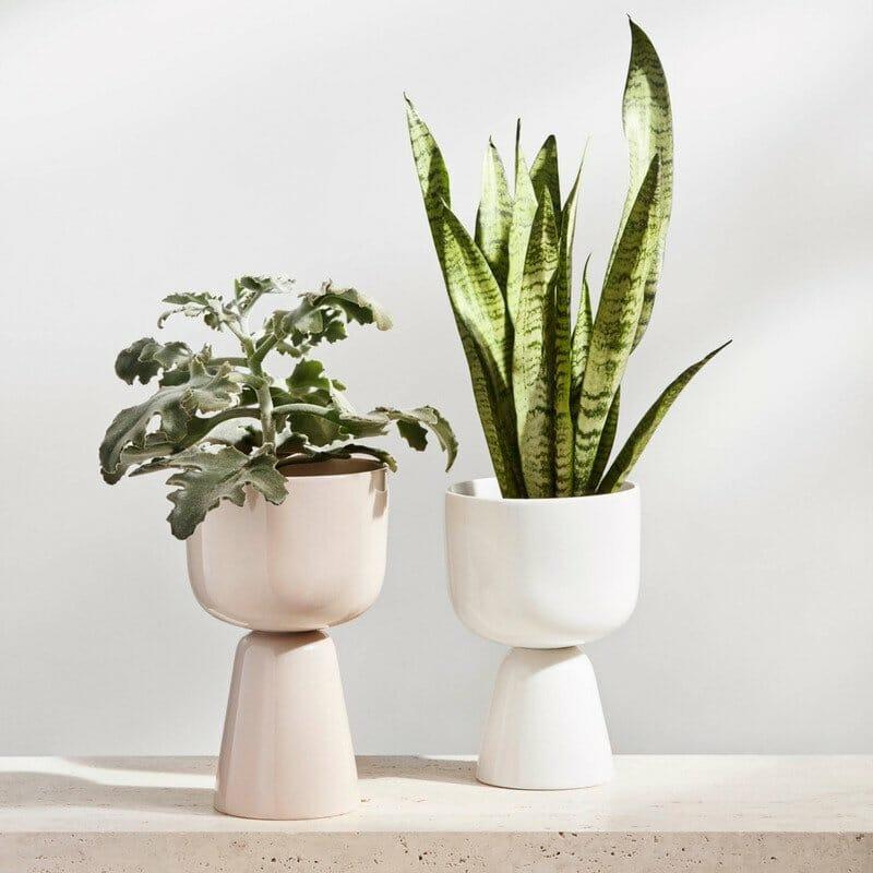 iittala Nappula Indoor Modern Plant Pot