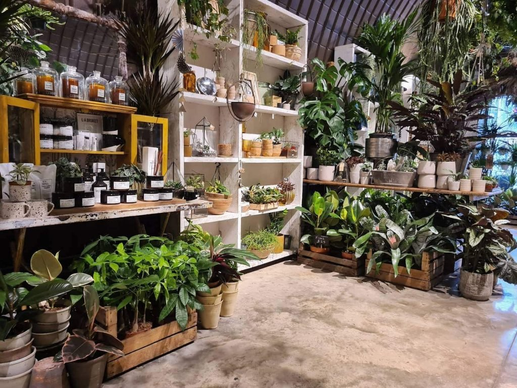 Forest Plant Shop in East Dulwich and Deptford Market Yard London