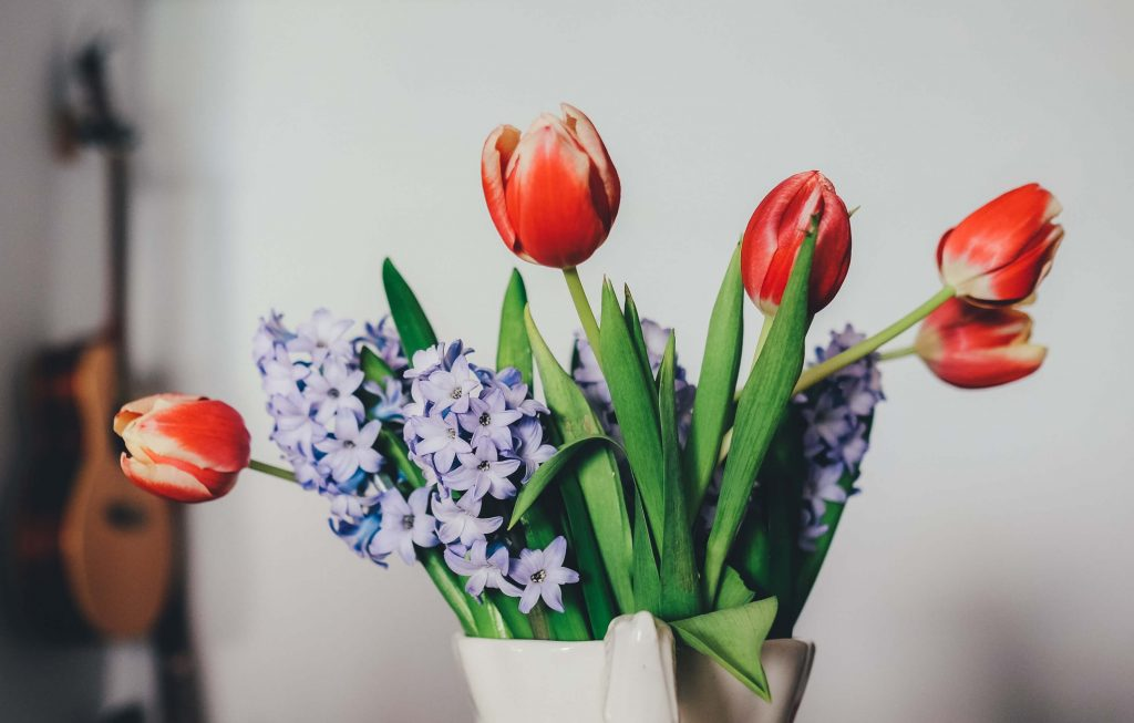 How to arrange tulip flowers
