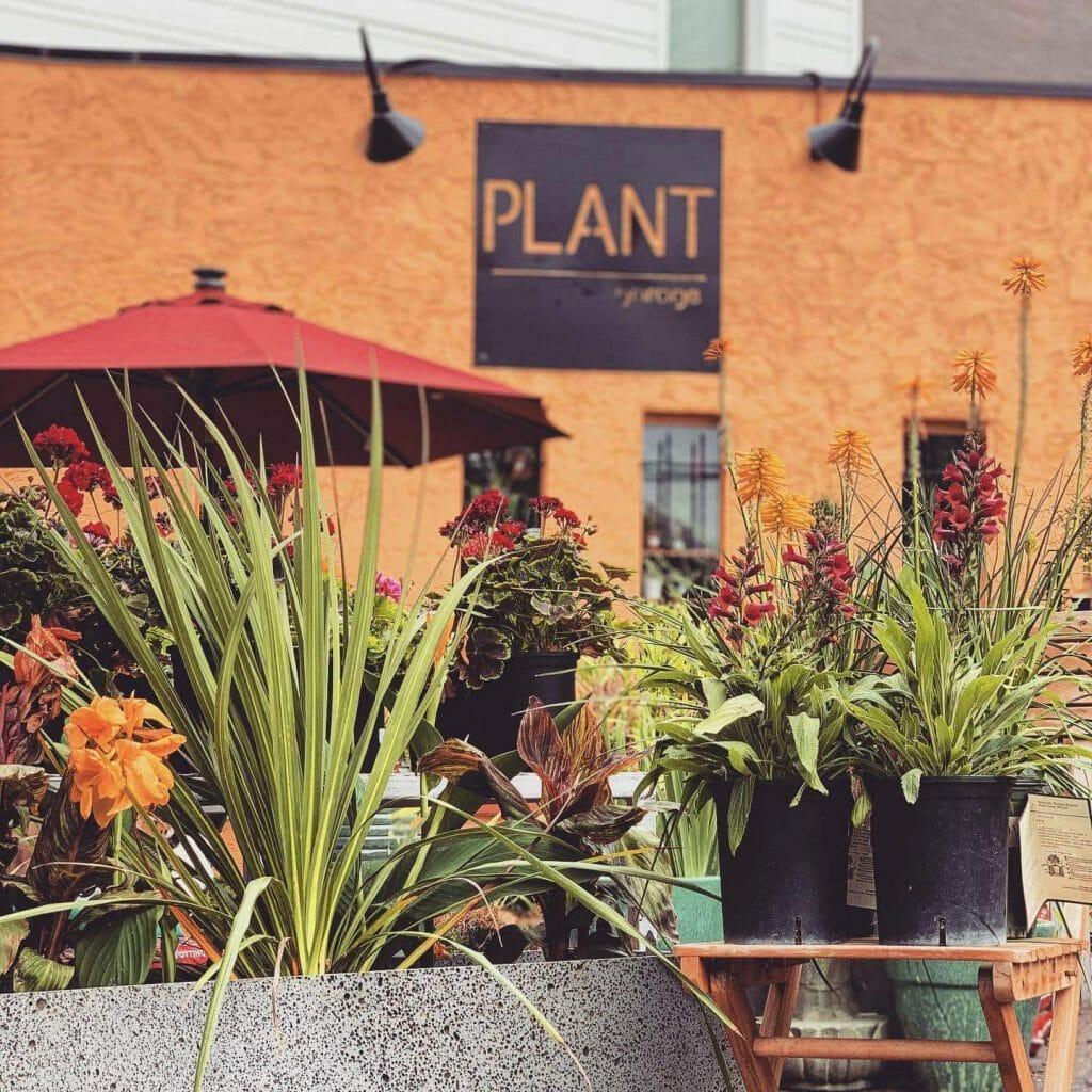 Plant Garage Garden Center in Denver Colorado