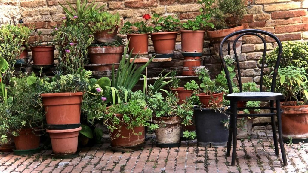 Drain pots and planters in your garden after heavy rain