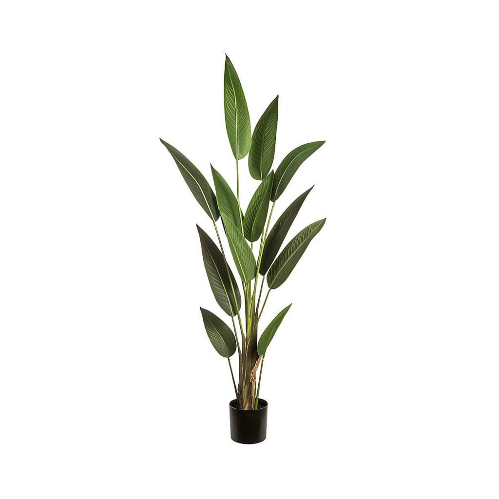 Faux Bird of Paradise Plants for Sale at Terrain