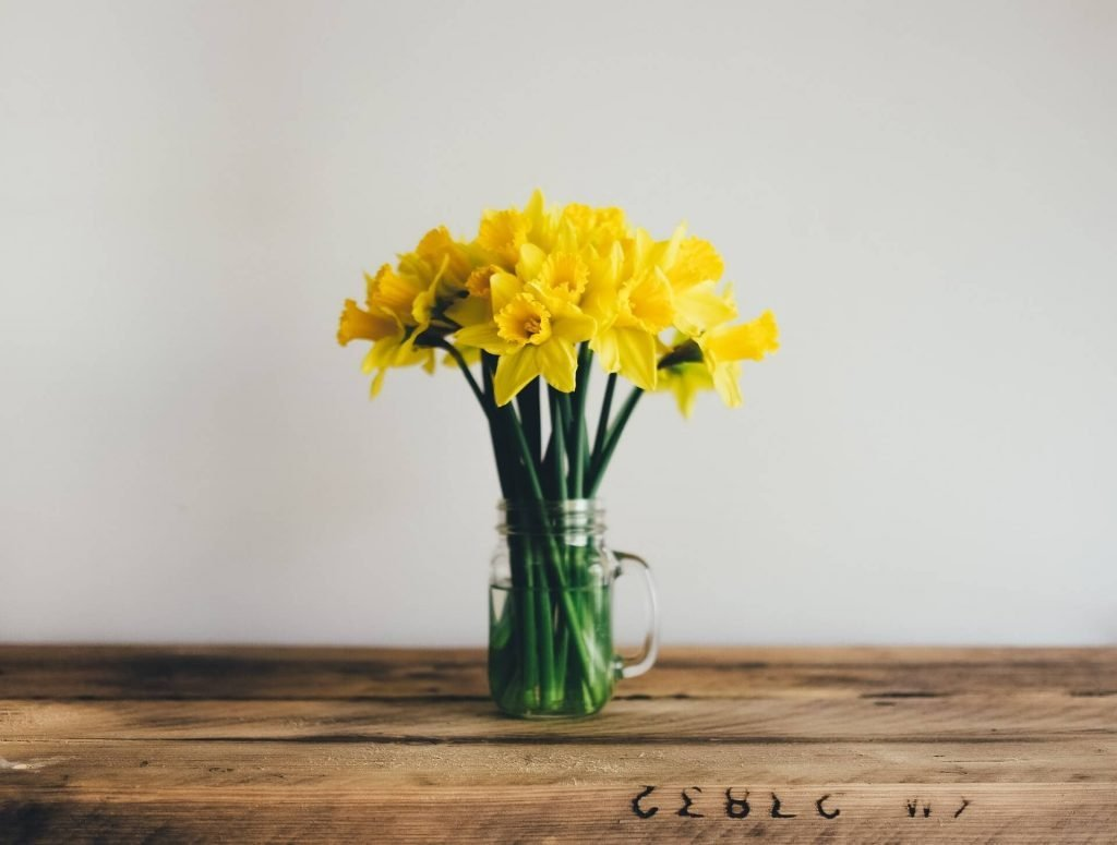 Gifting Narcissus Flowers