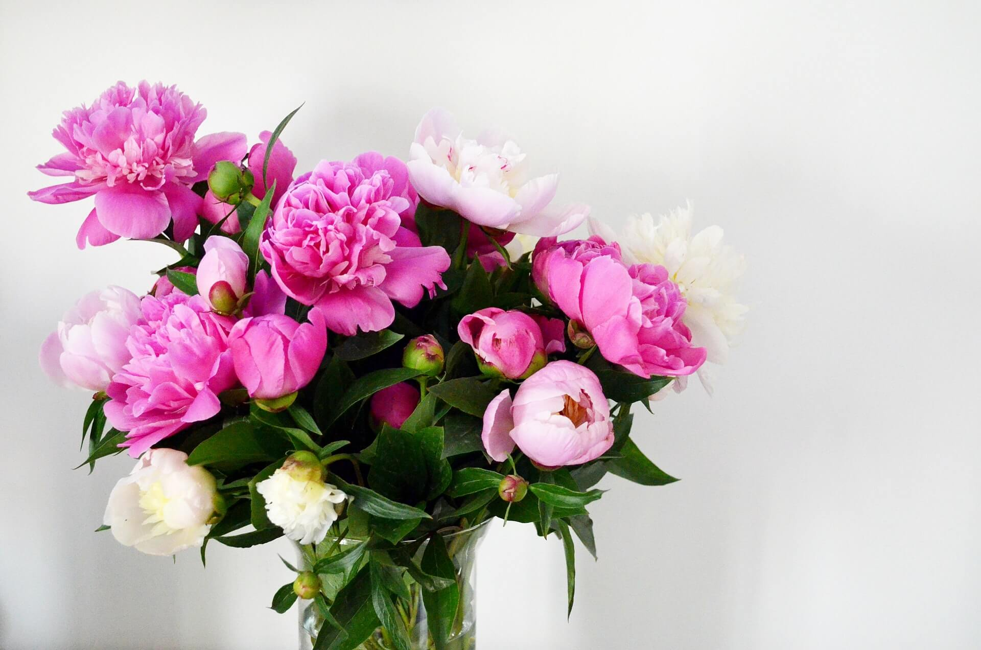 The Best Flower Discount Coupons Promo Codes November 2020 Petal Republic