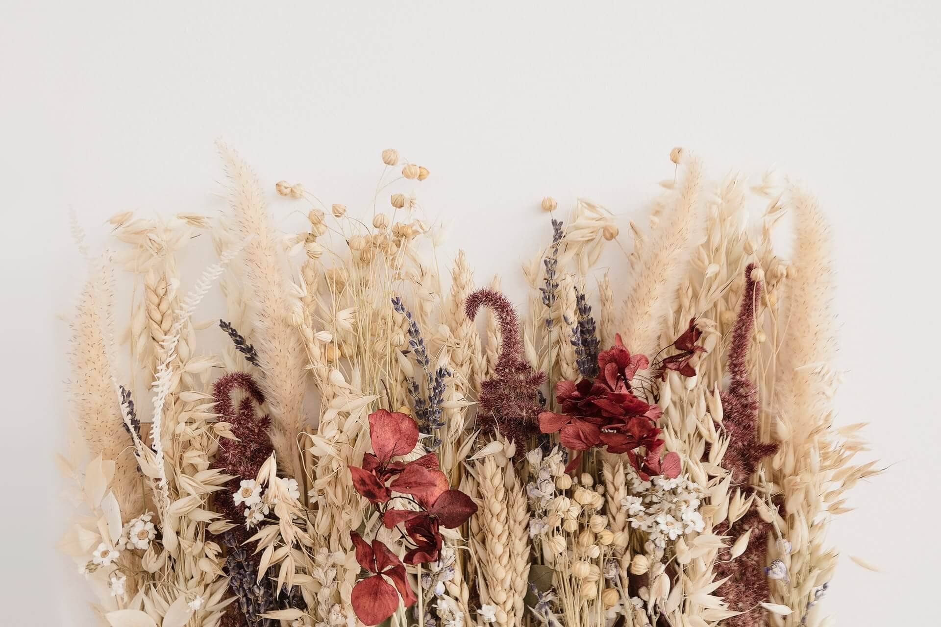 10 Best Florists For Dried Flowers In New York City Petal Republic