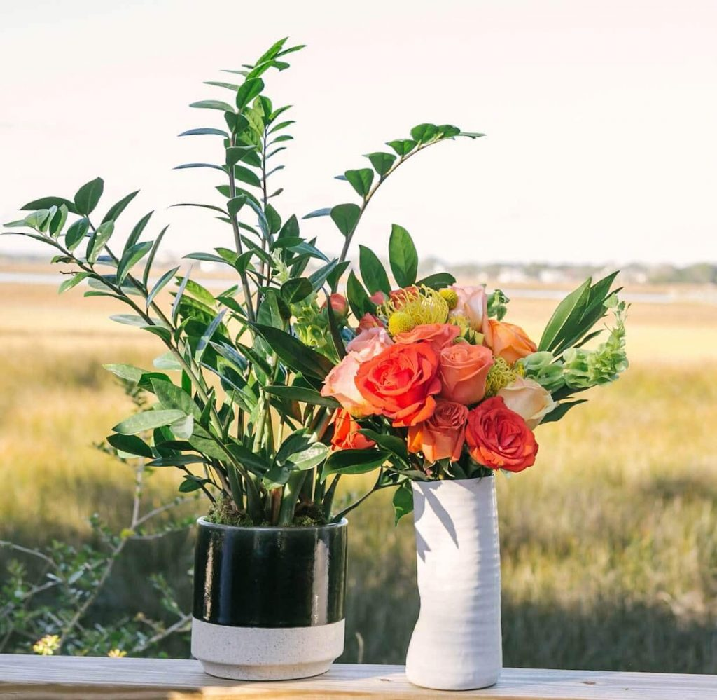 UrbanStems Plant Delivery in Houston, Texas