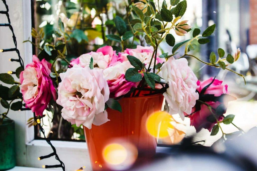 Chrysanthemum Flower Gifting