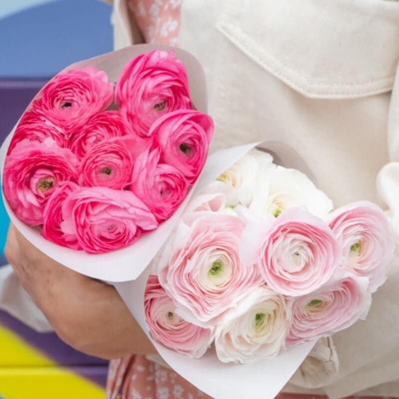 Ode a la rose weekly flower delivery subscription in the USA