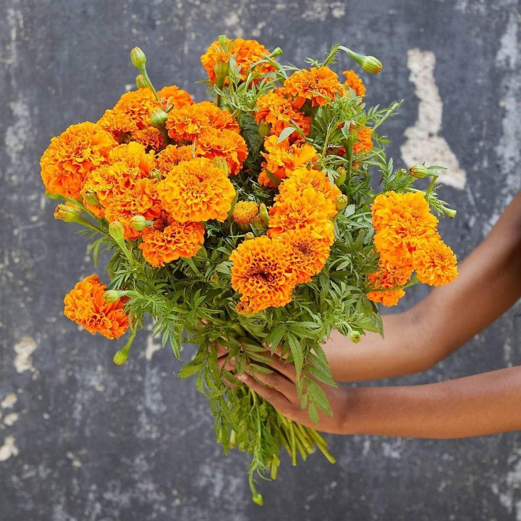 Terrain Online Flower Delivery USA