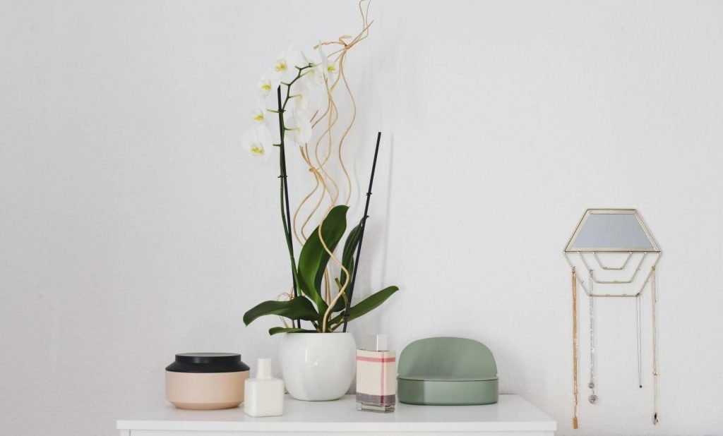 What type of water is best for orchid plants
