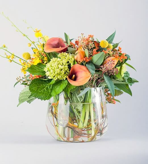 Allan Woods Flowers Same Day Delivery in Washington DC