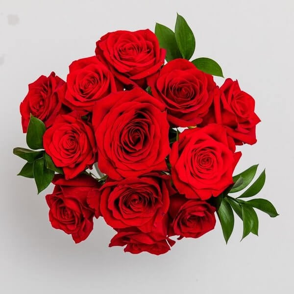 Floom Same Day Roses Delivery in Chicago