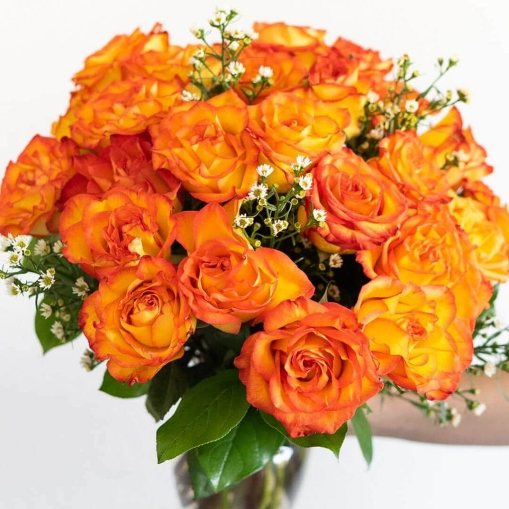 FromYouFlowers Cheap Roses for Sale in Los Angeles, CA