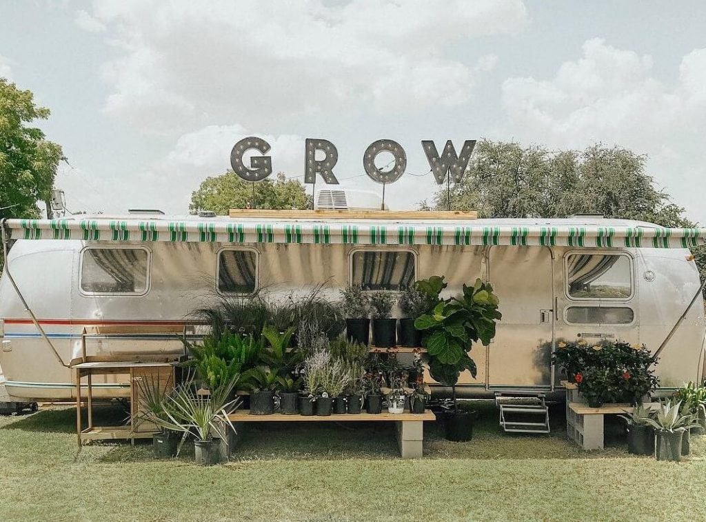 Grow Plant Shop in Dallas-Fort Worth