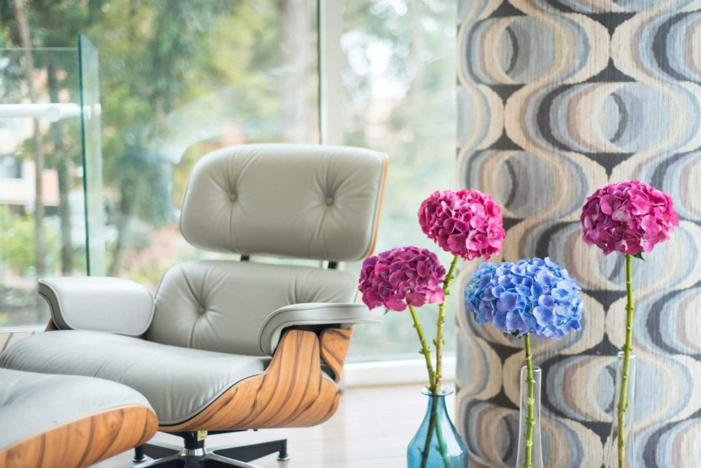 How to care for cut hydrangea flowers at home