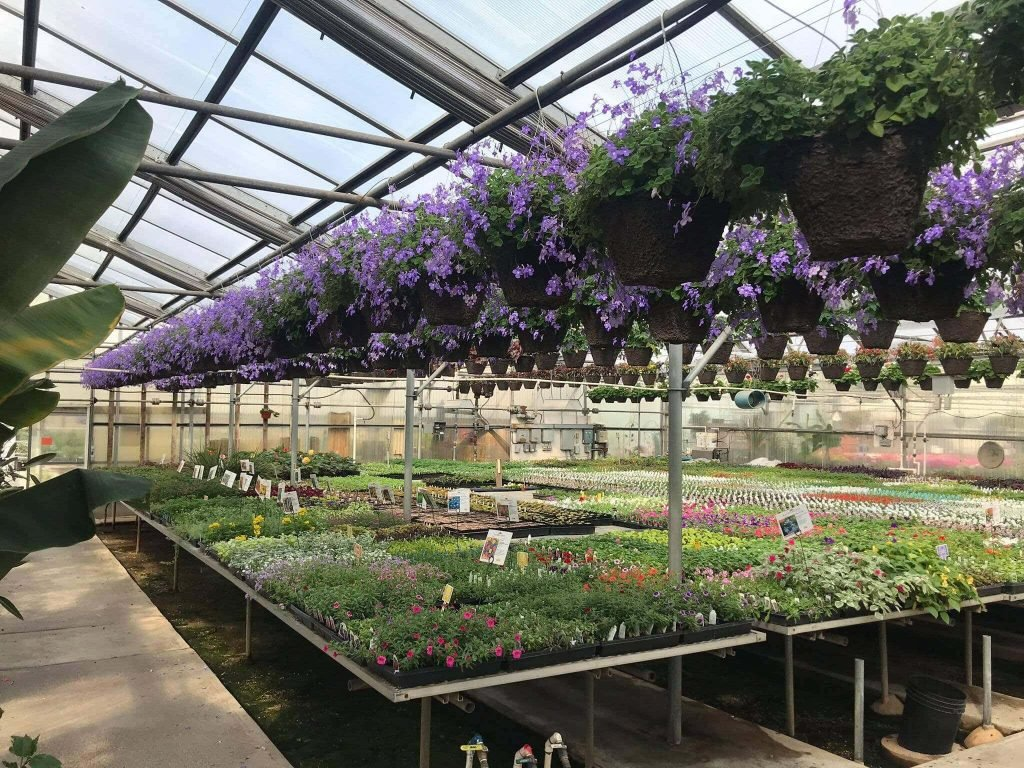 Marbott's Greenhouse and Plant Nursery in Portland Oregon