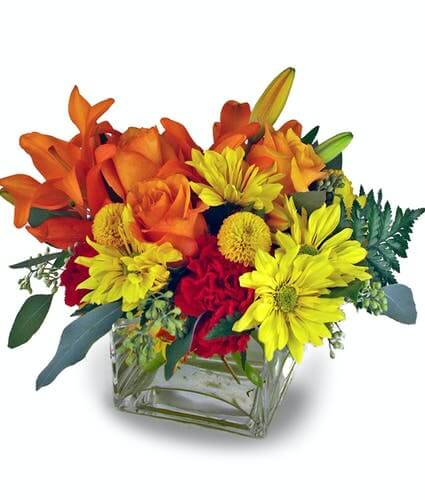 McNamara Florist Same Day Flower Delivery in Indianapolis Indiana