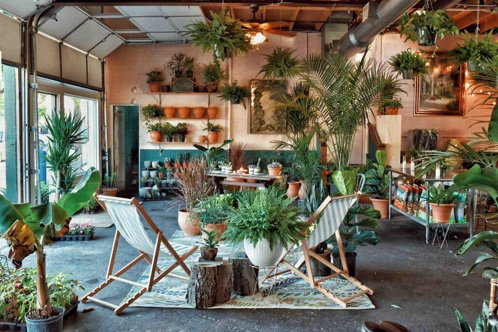 Oasis Plant Shop in Dallas Texas