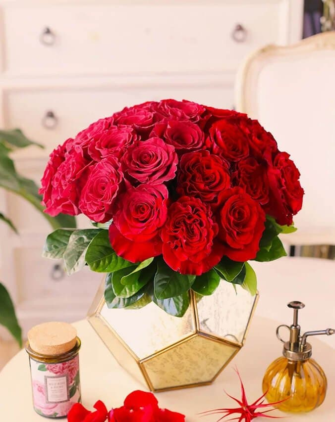 Orchid-Republic-Same-Day-Roses-Delivery-in-Los-Angeles