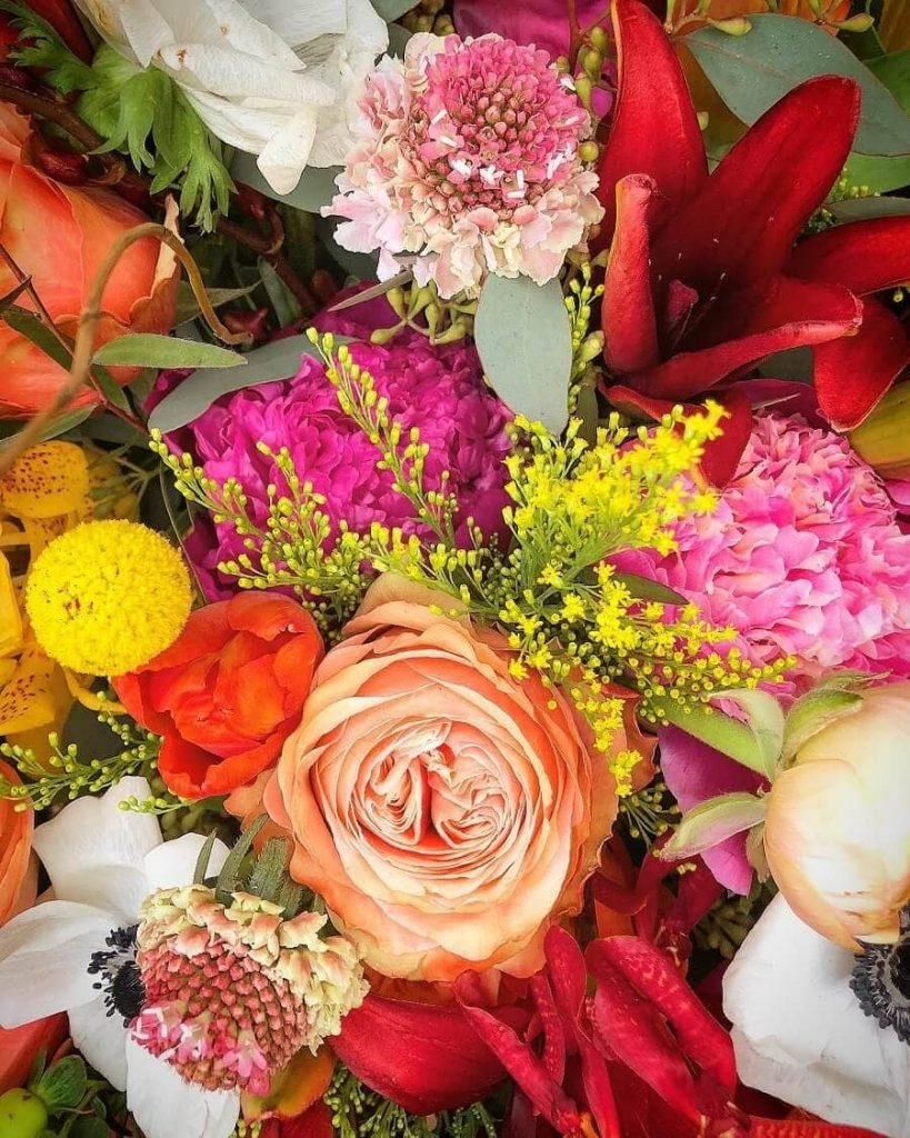 Trochta's Flower delivery in Oklahoma City