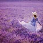 100 Stunning Purple Flowers