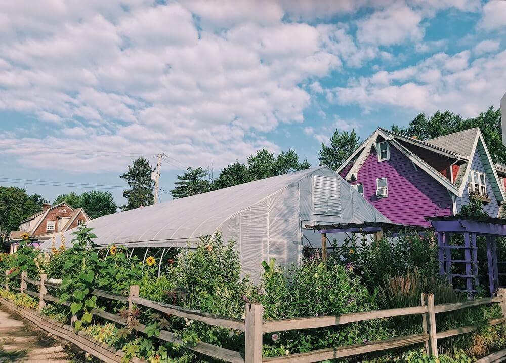 Detroit Abloom Flower Farm