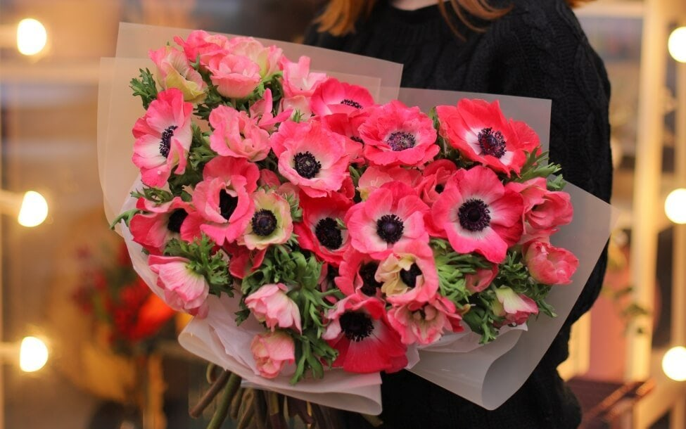 Suitable Gifting Occasions for Anemone Flowers