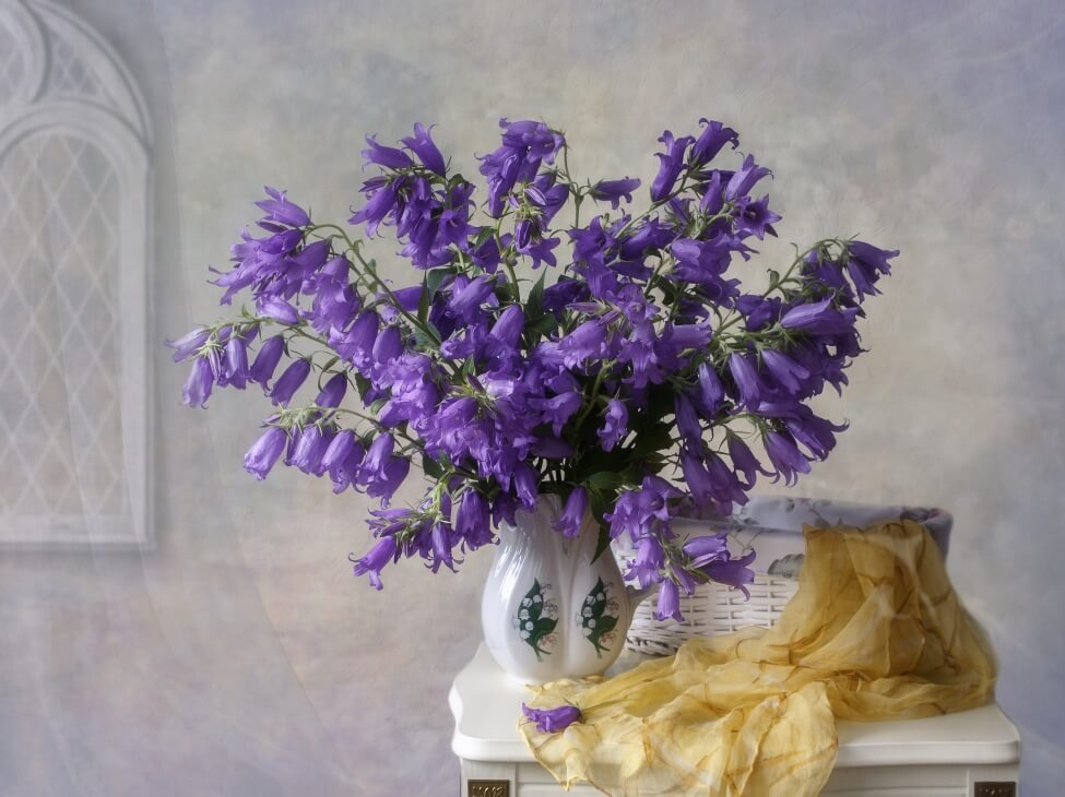 Do symbolize what bluebells What does