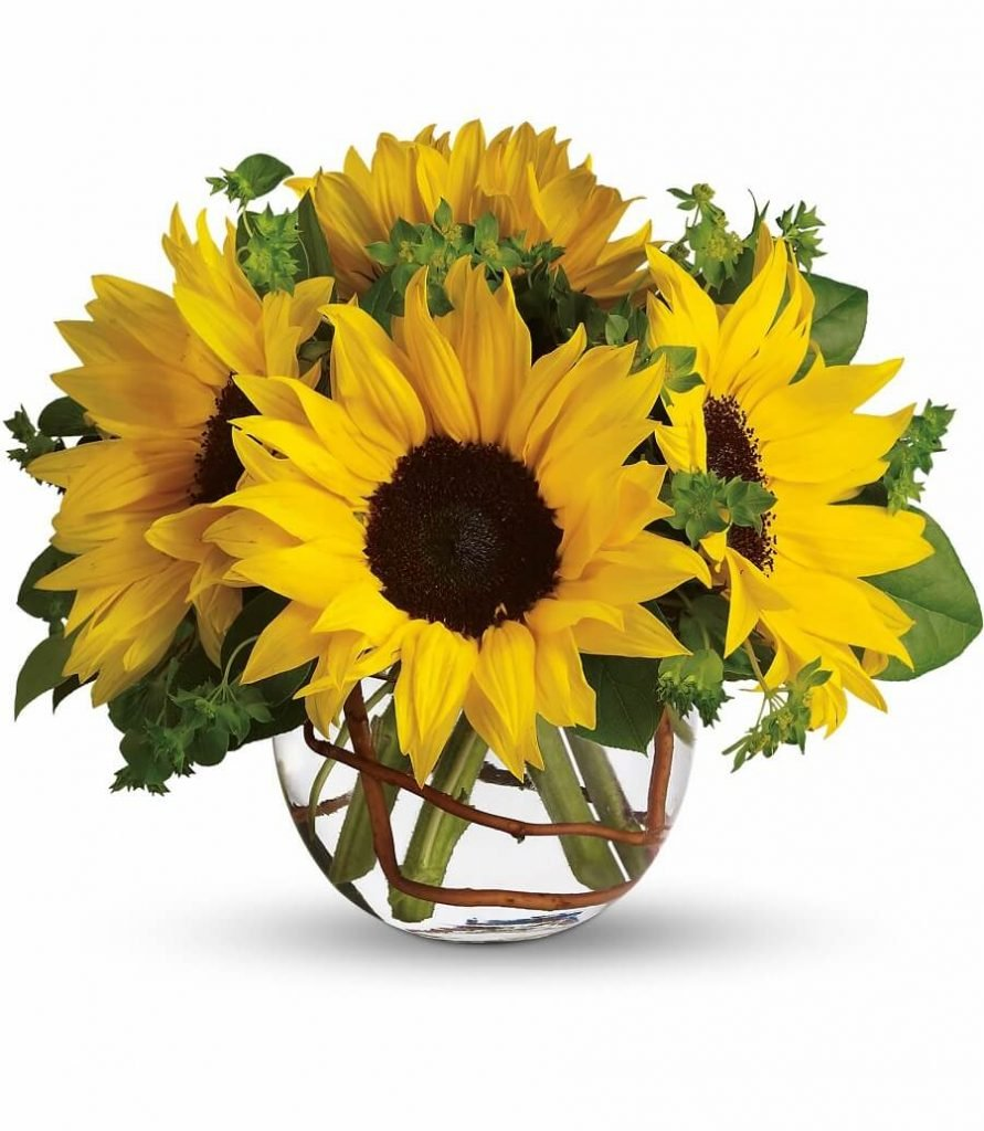 Four Season Florist and Gifts Delivery in Rosemead, California