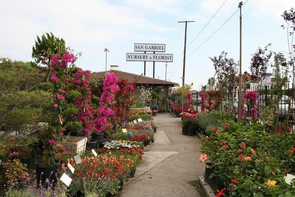 San Gabriel Nusrsery and Florist in Rosemead, California