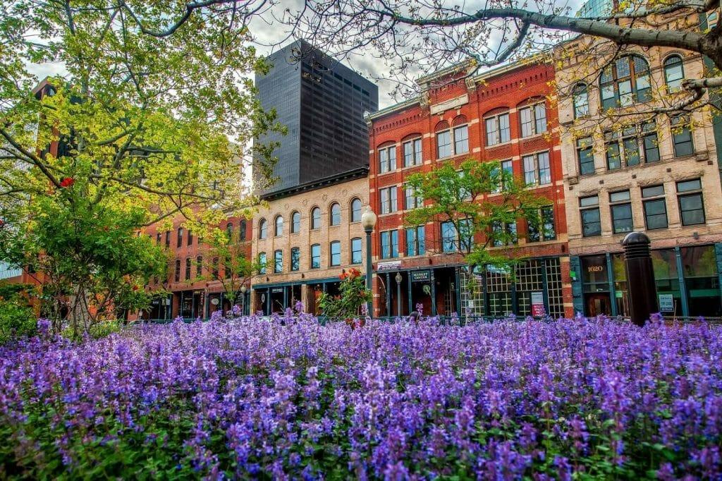 The Best Florists for Flower Delivery in Denver, Colorado