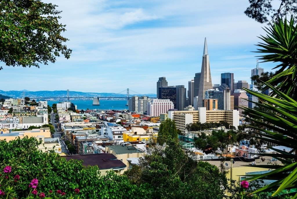 The Best Florists for Flower Delivery in San Francisco California