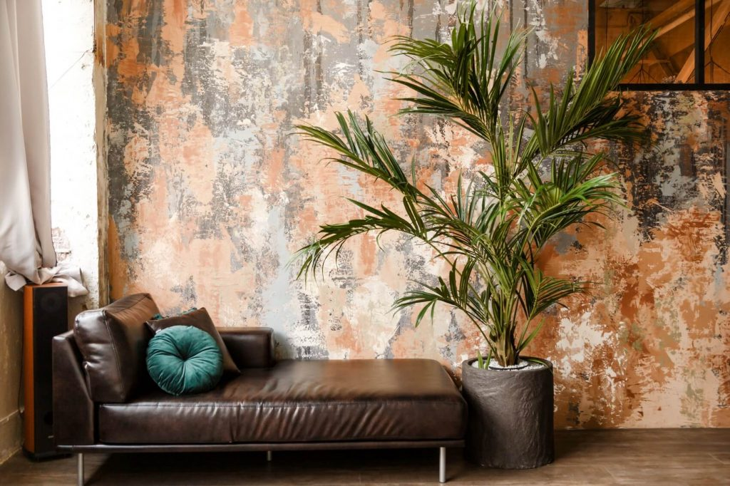 Ultimate Guide to Kentia Palm Care and Growing Tips