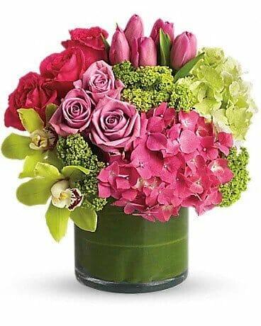 Pioneer-Flowers-in-Cerritos_-CA