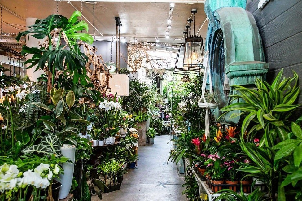The Leaf and Petal Co. in Santa Monica, CA