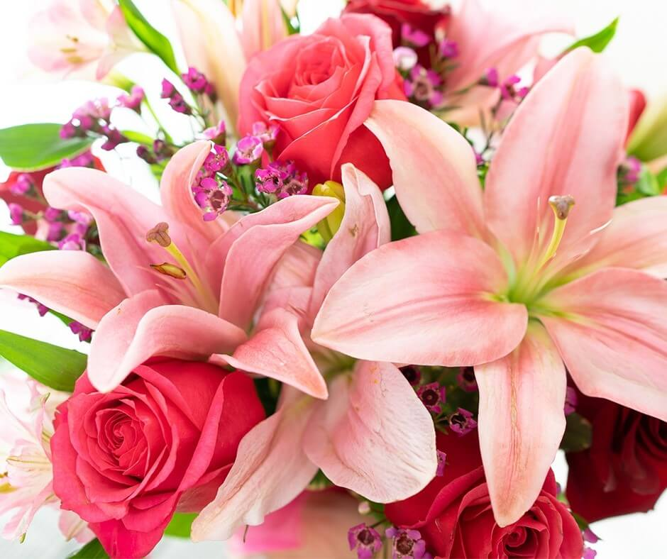FromYouFlowers Cheap Same Day Flower Delivery in Tampa, Florida