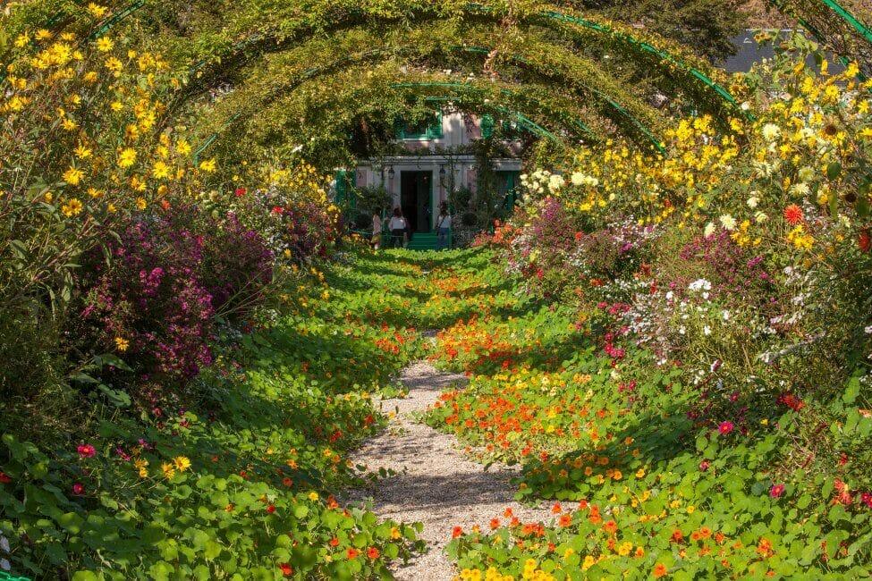 Nasturtium Flowers in the Victorian Era