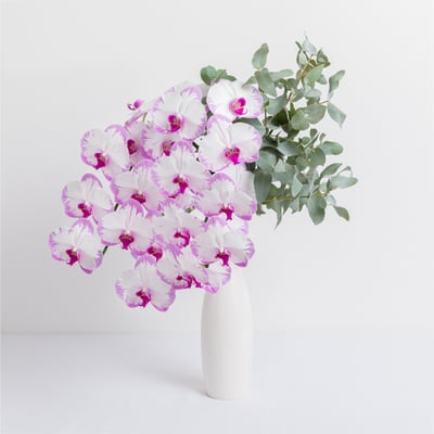 Ode-a-la-Rose-Orchid-Delivery-NYC