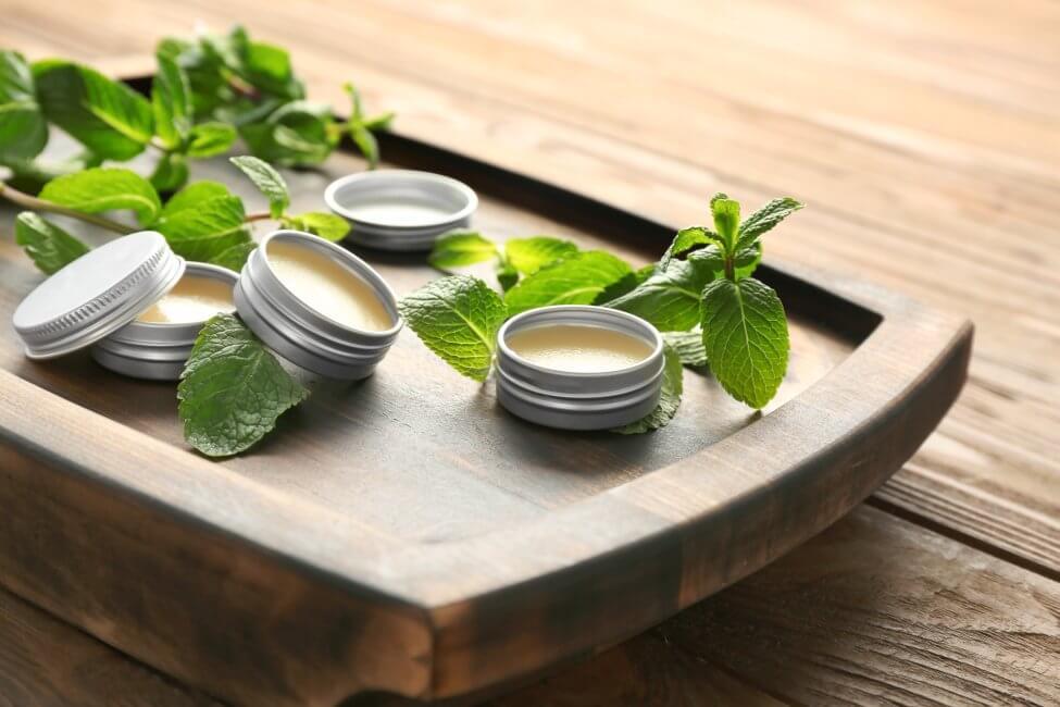 Uses and Benefits of Lemon Balm