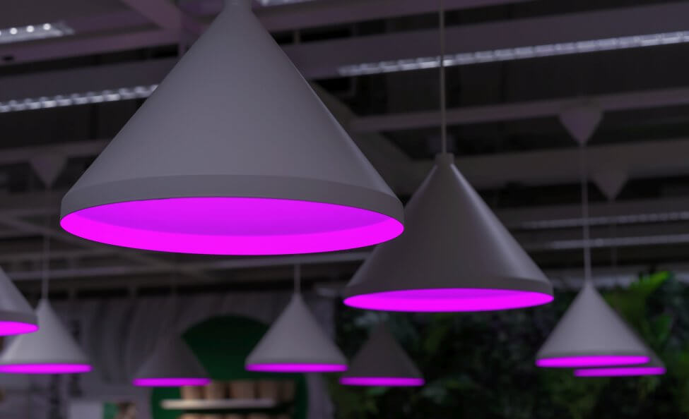 What are the Main Types of Artificial Grow Lights Suitable for Houseplants