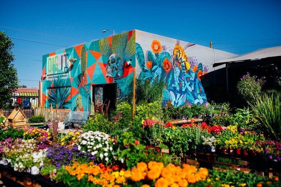 Dig it Gardens Nursery and Garden Center in Phoenix, Arizona