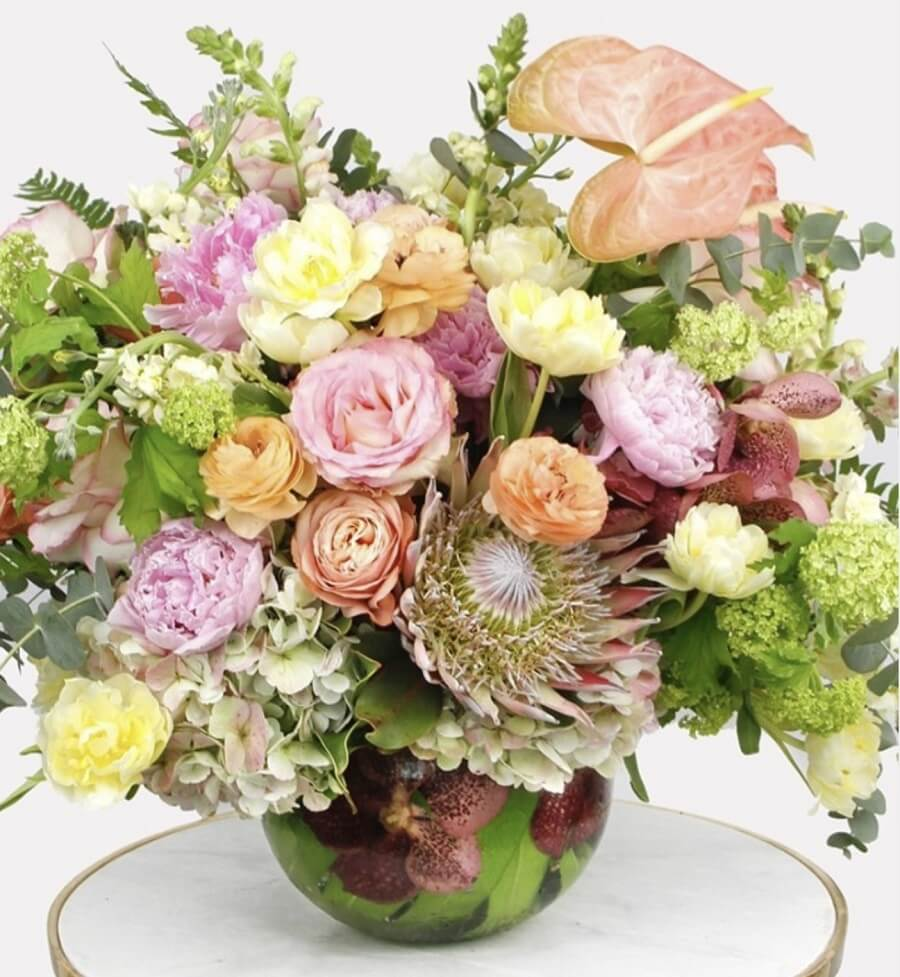 Dr Delphium Flower Delivery in Texas
