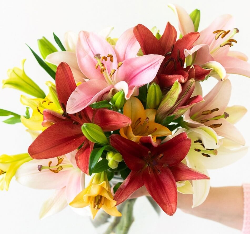 FromYouFlowers Same Day Cheap Flower Delivery in the Upper East Side, New York