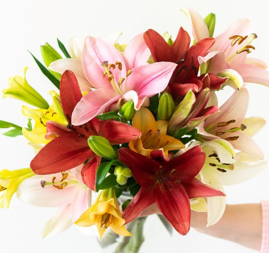 FromYouFlowers Same Day Flower Delivery in New York City