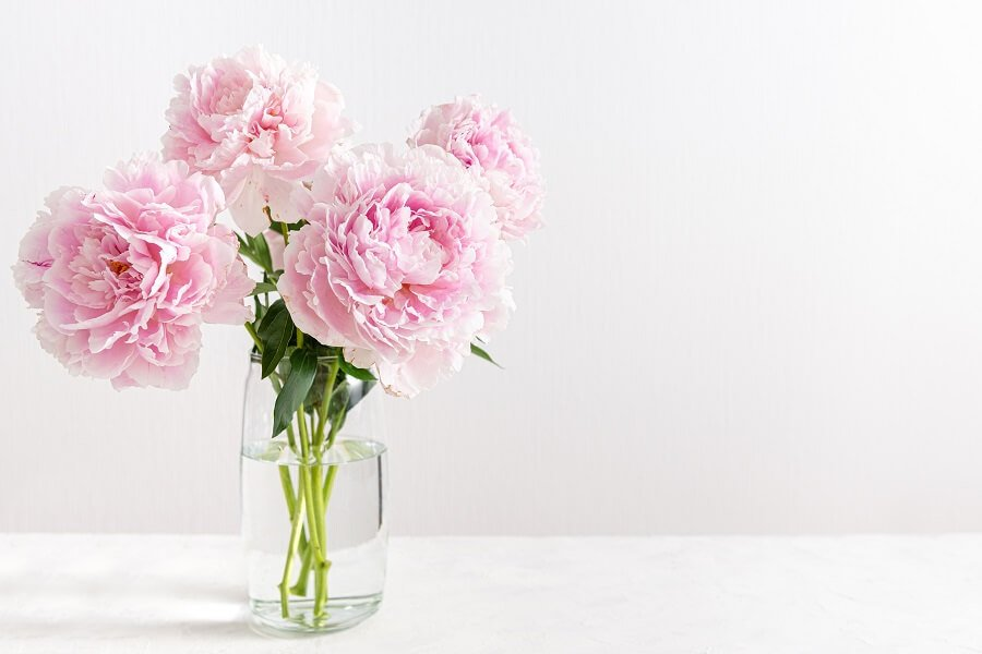 How to Care for Fresh Cut Flower Arrangements