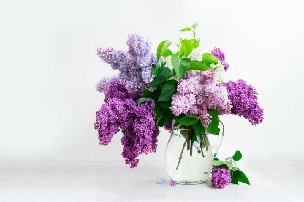 How to Make Fresh Cut Flowers Last Longer