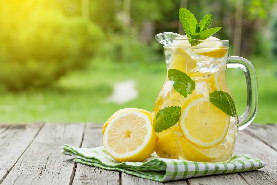 Lemonade Fresh Cut Flower Care