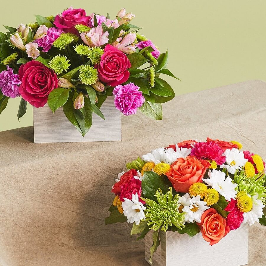 ProFlowers Same Day Flower Delivery in Texas