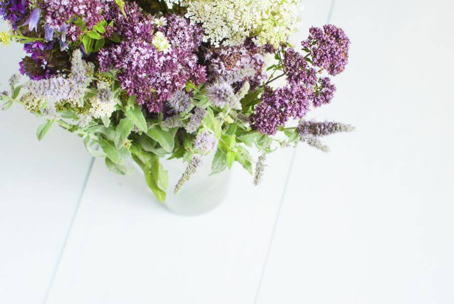 Suitable Gifting Occasions for Yarrow